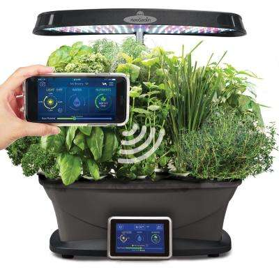 Bounty Wi-Fi with Gourmet Herb Seed Pod Kit