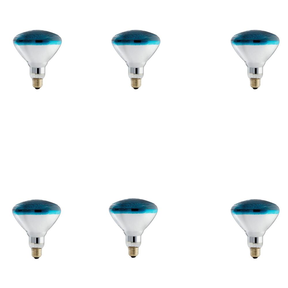 Philips 100-Watt PAR38 Incandescent Autism Speaks Blue Flood Light Bulb (6-Pack)