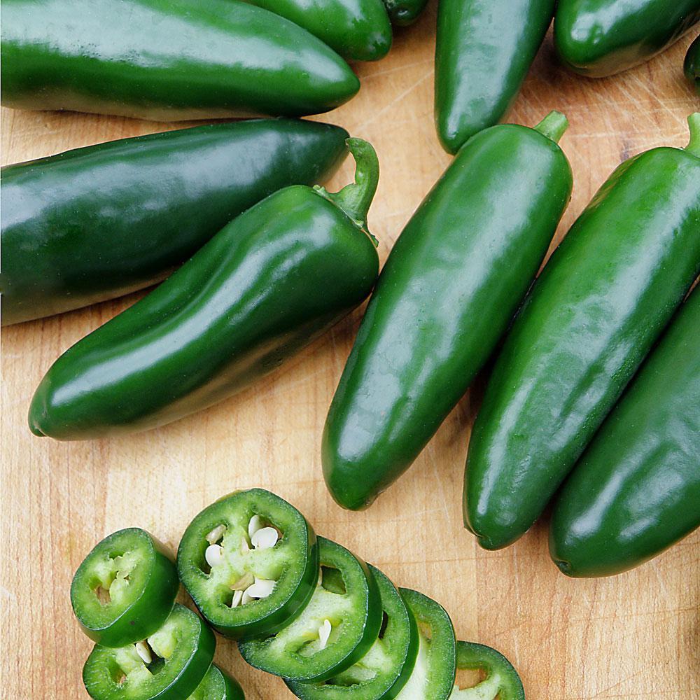 19.3 oz. Jalapeño Pepper Plant 2-Pack
