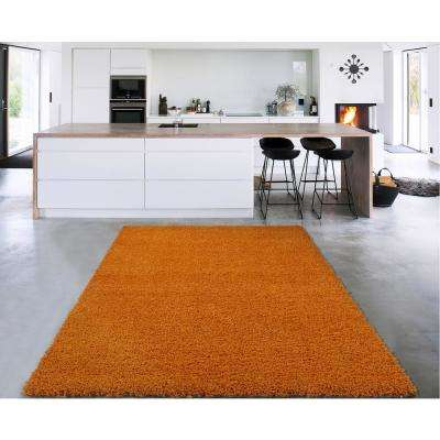 Orange 5 X 7 Area Rugs Rugs The Home Depot