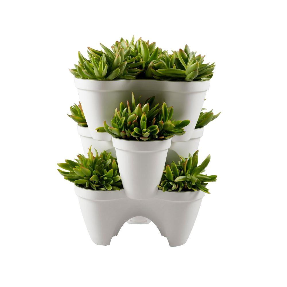 Keter Resin Ivy Planter