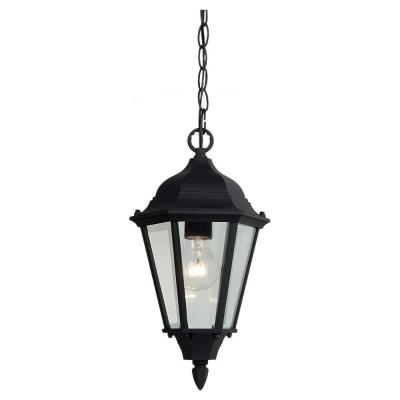 Bakersville 1-Light Black Outdoor Hanging Pendant Fixture