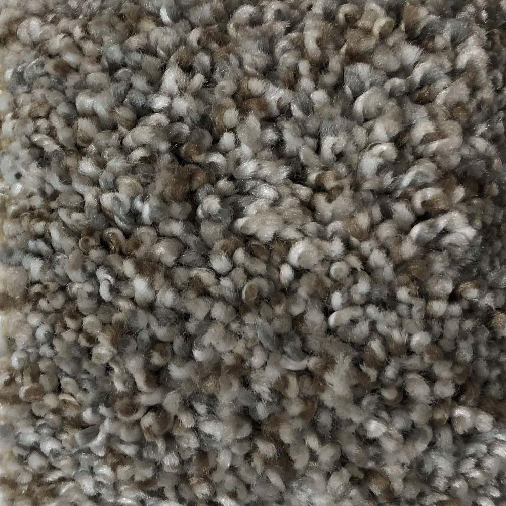 Home Decorators Collection Color Sample Trendy Threads I