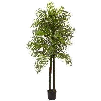 Indoor and Outdoor 7 ft. Double Robellini Palm Tree UV Resistant