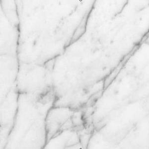 Pegasus 4 In X 4 In White Carrara Marble Sample 99108