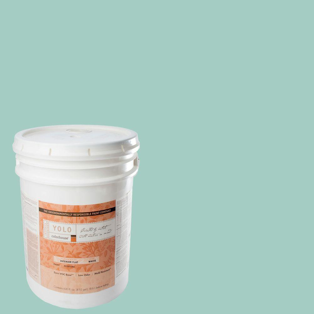YOLO Colorhouse 5-gal. Water .07 Flat Interior Paint-DISCONTINUED