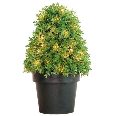 18 in. Boxwood Tree with Dark Green Growers Pot with 35 Clear Lights