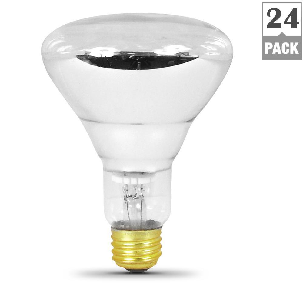 100-Watt 12-Volt BR30 Incandescent Pool and Spa Flood Light Bulb (24-Pack)