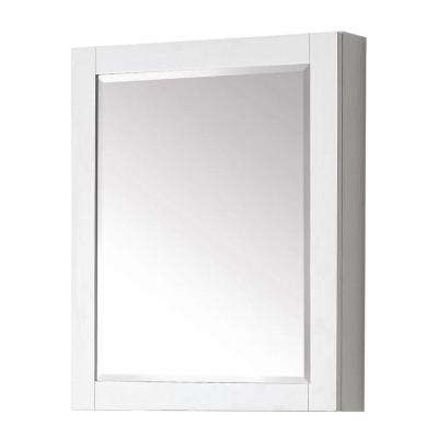 Transitional 30 in. L x 24 in. W Framed Wall Medicine Cabinet in White