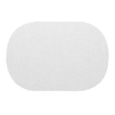 Fishnet Oval Placemat in White (Set of 12)