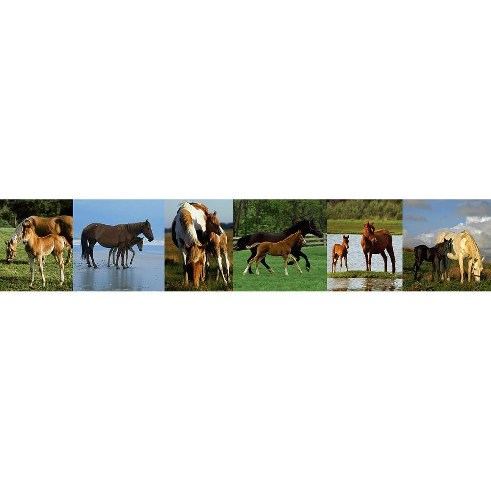 National Geographic 9 in. Horses Border