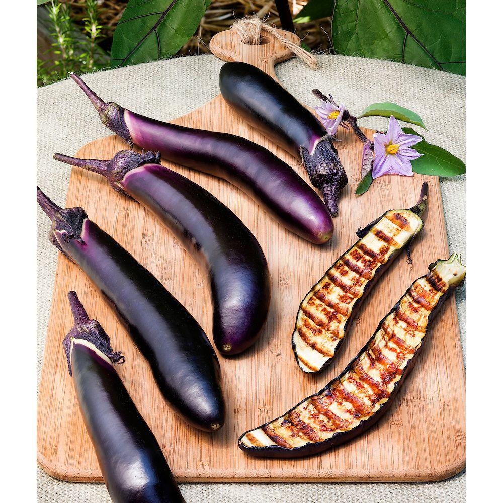 Bonnie Plants 4.5 in. Ichiban Eggplant