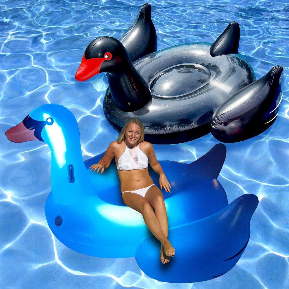 Swimline giant led light up swan and black swan swimming for Pack swimming