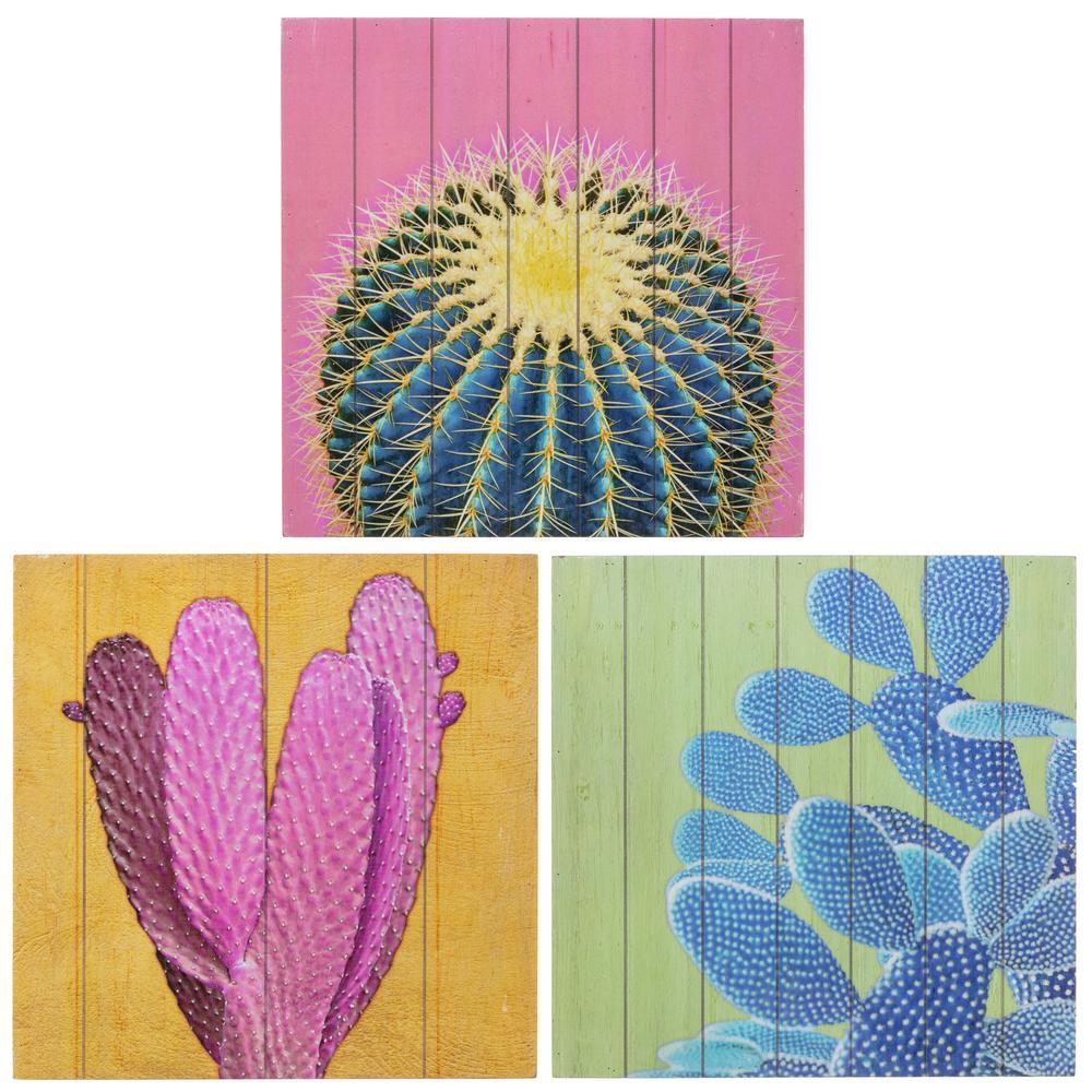 kieragrace  Garcia Cactus Art, 3