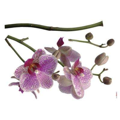 28 in. x 36 in. Orchids Wall Decal