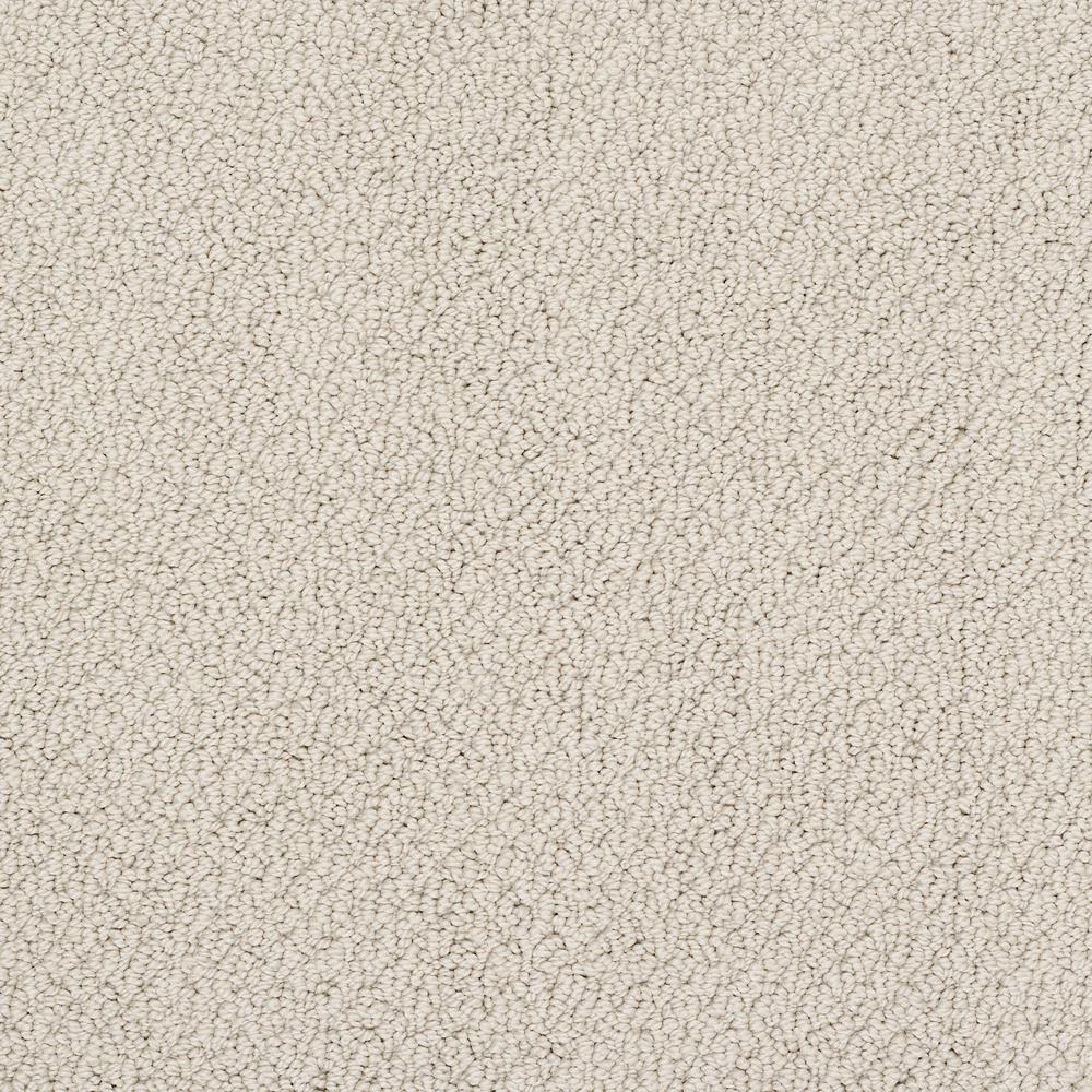 What Color Is Buff >> Lifeproof Carpet Sample Lightbourne Color Buff Loop 8 In X 8 In