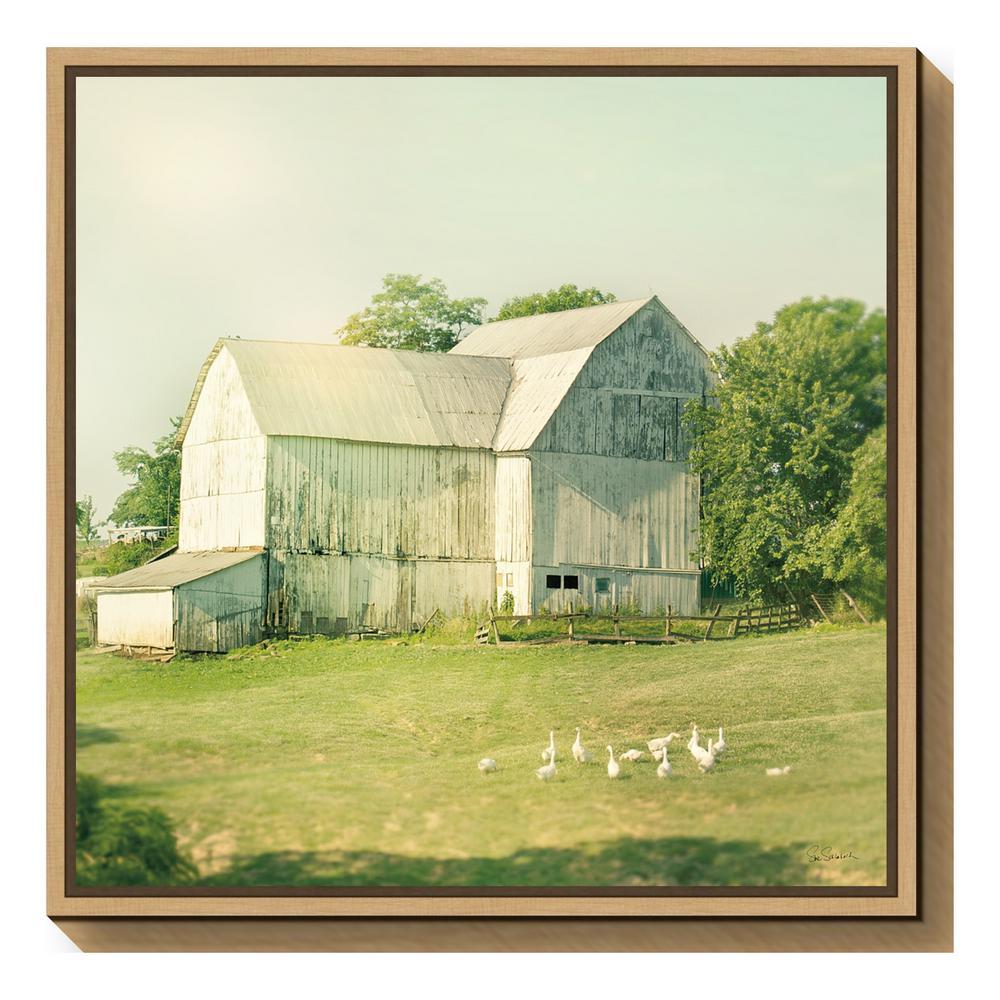 """""""Farm Morning III Square (Barn)"""" by Sue Schlabach Framed Canvas Wall Art"""