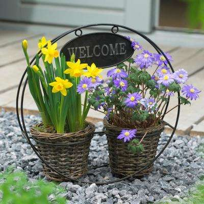 Welcome Container Garden (Set of 25)