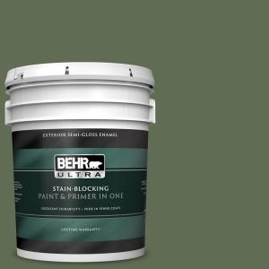 Behr Ultra 5 Gal Ecc 38 3 Sea Fern Semi Gloss Enamel Exterior Paint And Primer In One 585305 The Home Depot