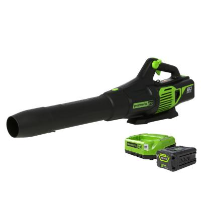 PRO 130 MPH 610 CFM 60-Volt Battery Cordless Hand-Held Leaf Blower with 2.5 Ah Battery and Charger BL60L251