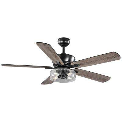 Aberwell 56 in. LED Matte Black Indoor/Outdoor Ceiling Fan with Light and Remote Control