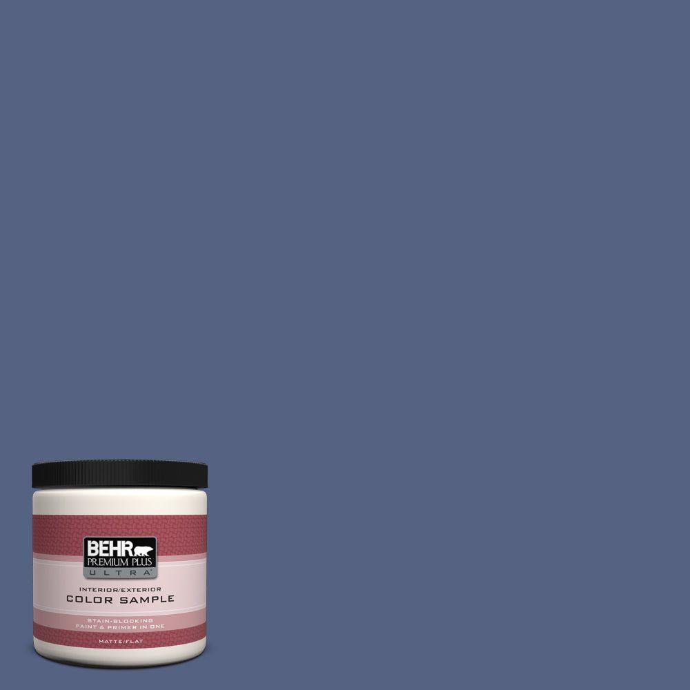 BEHR Premium Plus Ultra 8 oz. #610D-6 Enduring Interior/Exterior Paint Sample