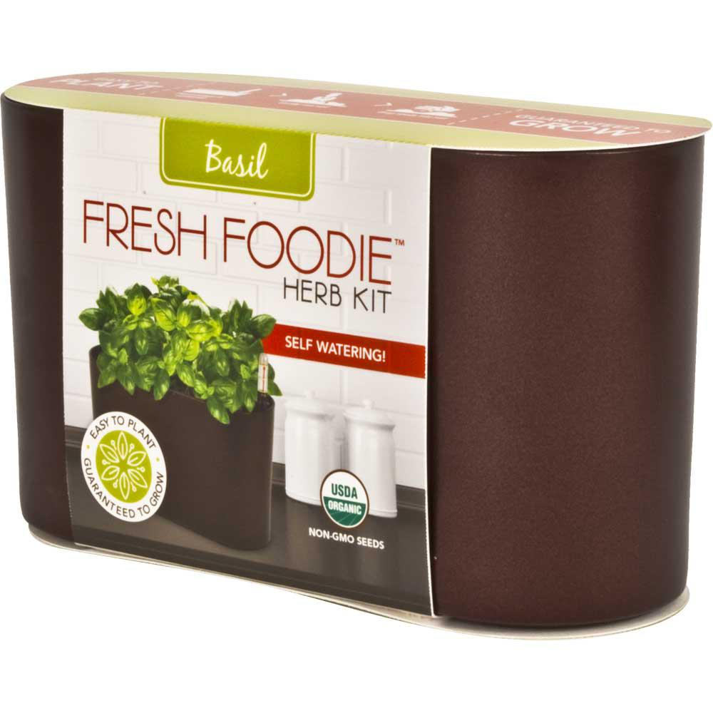 10 in. Fresh Foodie Basil Grow Kit Coffee Plastic Planter
