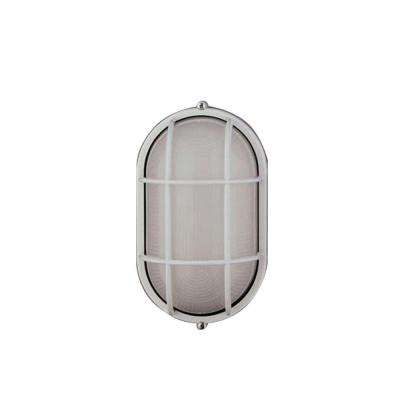 1 Light Outdoor Wall Sconce White Finish Frost Glass