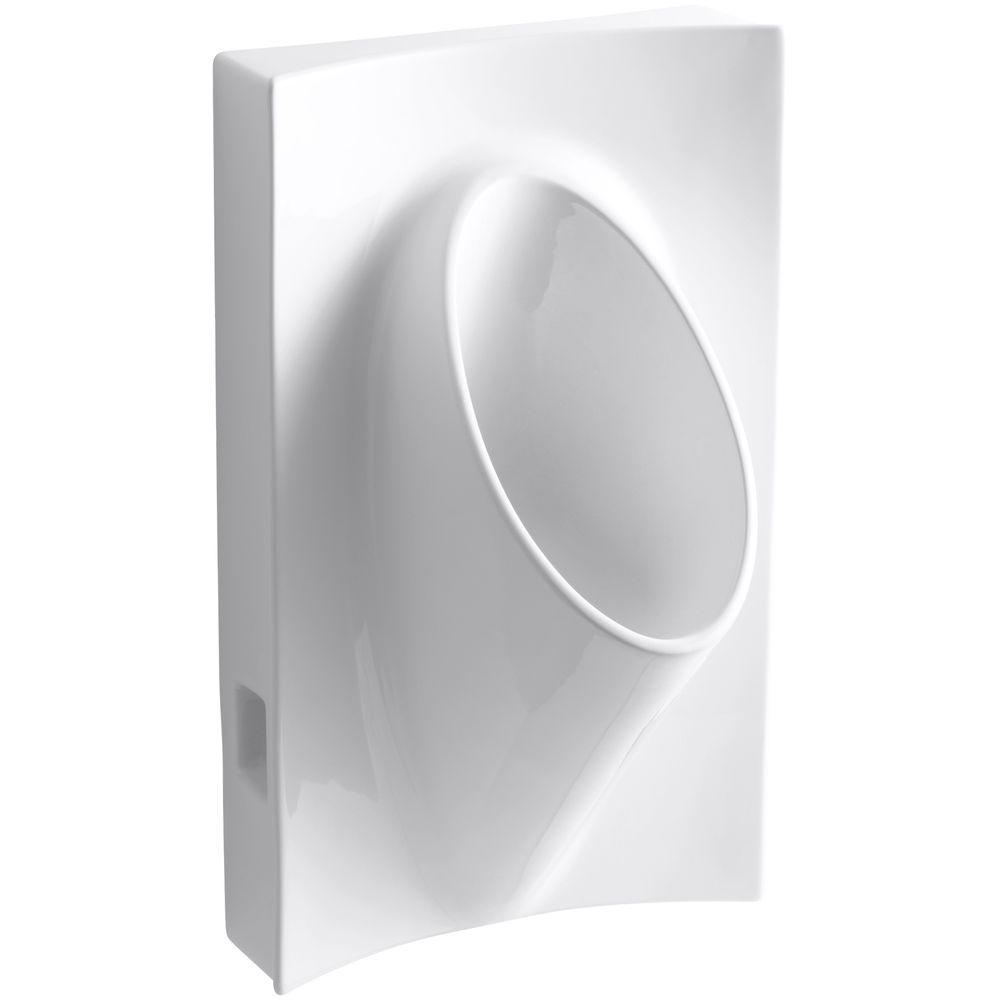 Kohler Steward Waterless Urinal In White K 4919 0 The