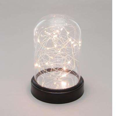 5.5 in. x 8 in. Clear Glass Cloche with Micro LED String Light