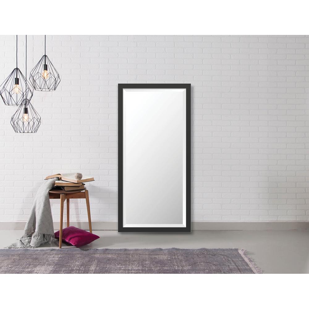 Larson-Juhl Hyde 22.875 in. x 46.875 in. Modern Framed Bevel Mirror ...