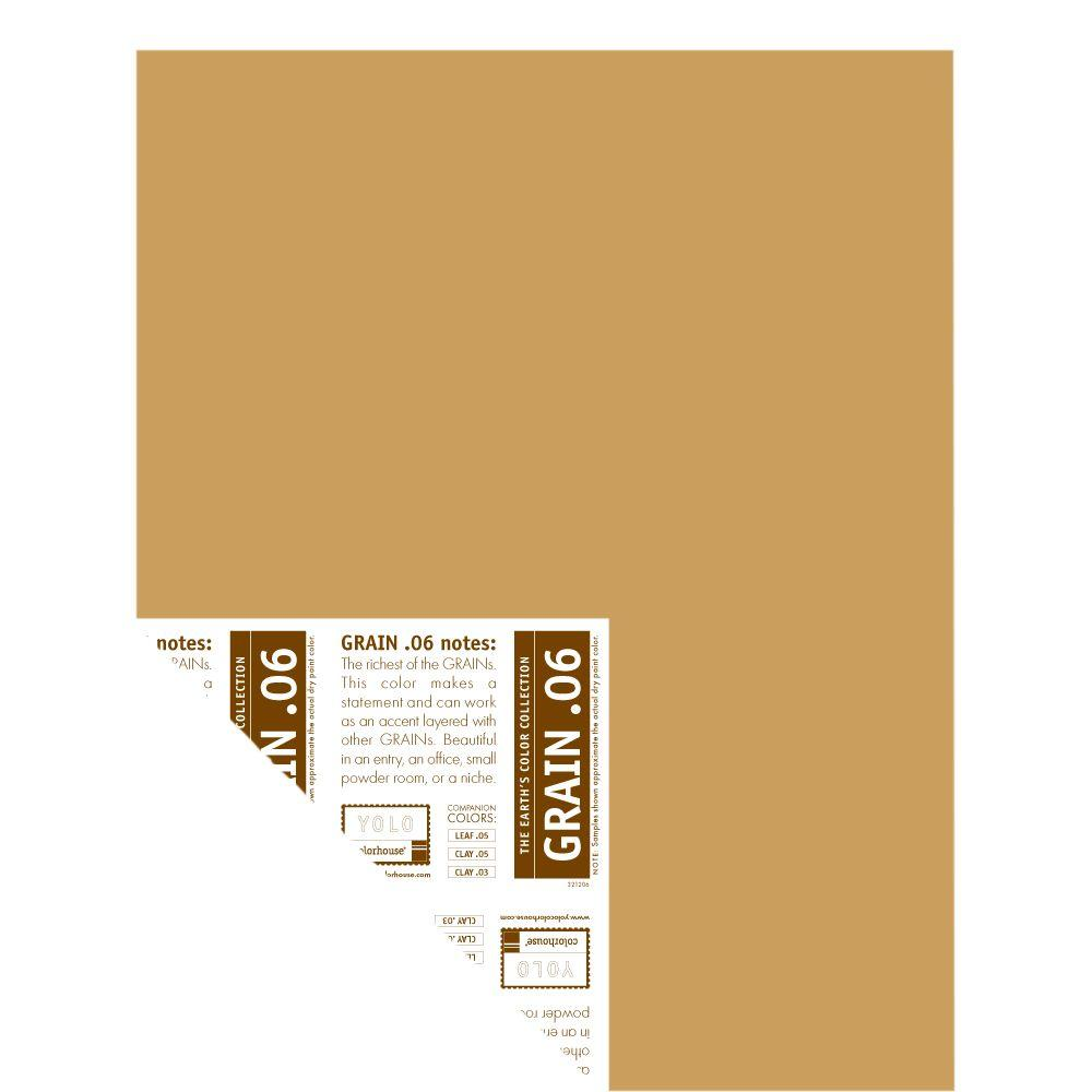 YOLO Colorhouse 12 in. x 16 in. Grain .06 Pre-Painted Big Chip Sample