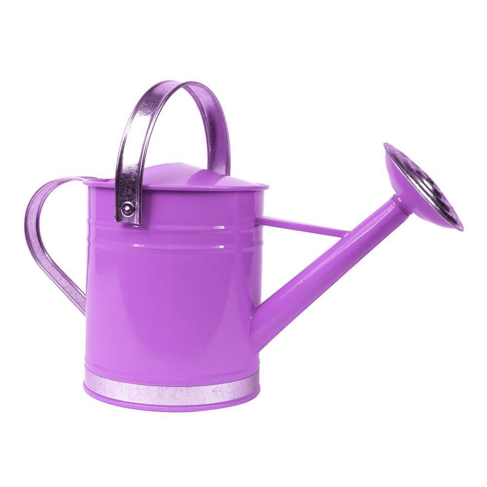 Basic 1 Gal. Purple Metal Watering Can