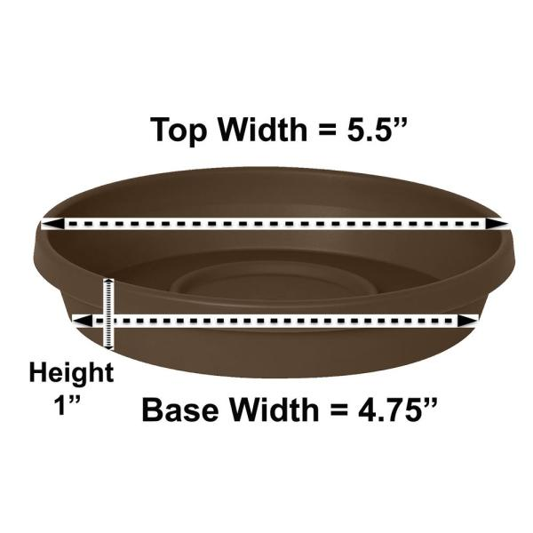 Terra 5.5 in. Chocolate Plastic Plant Saucer Tray
