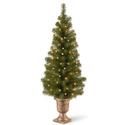 4 ft. Montclair Spruce Entrance Artificial Christmas Tree with Clear Lights