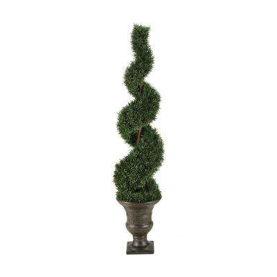 Haverford 6 ft. Spiral Topiary
