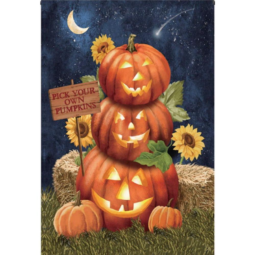 1 ft. x 1-1/2 ft. Garden Suede Pumpkins This Way Flag