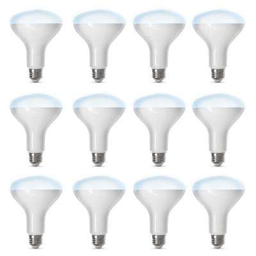 65-Watt Equivalent Daylight (5000K) BR30 Dimmable Wi-Fi LED Smart Light Bulb (12-Pack)