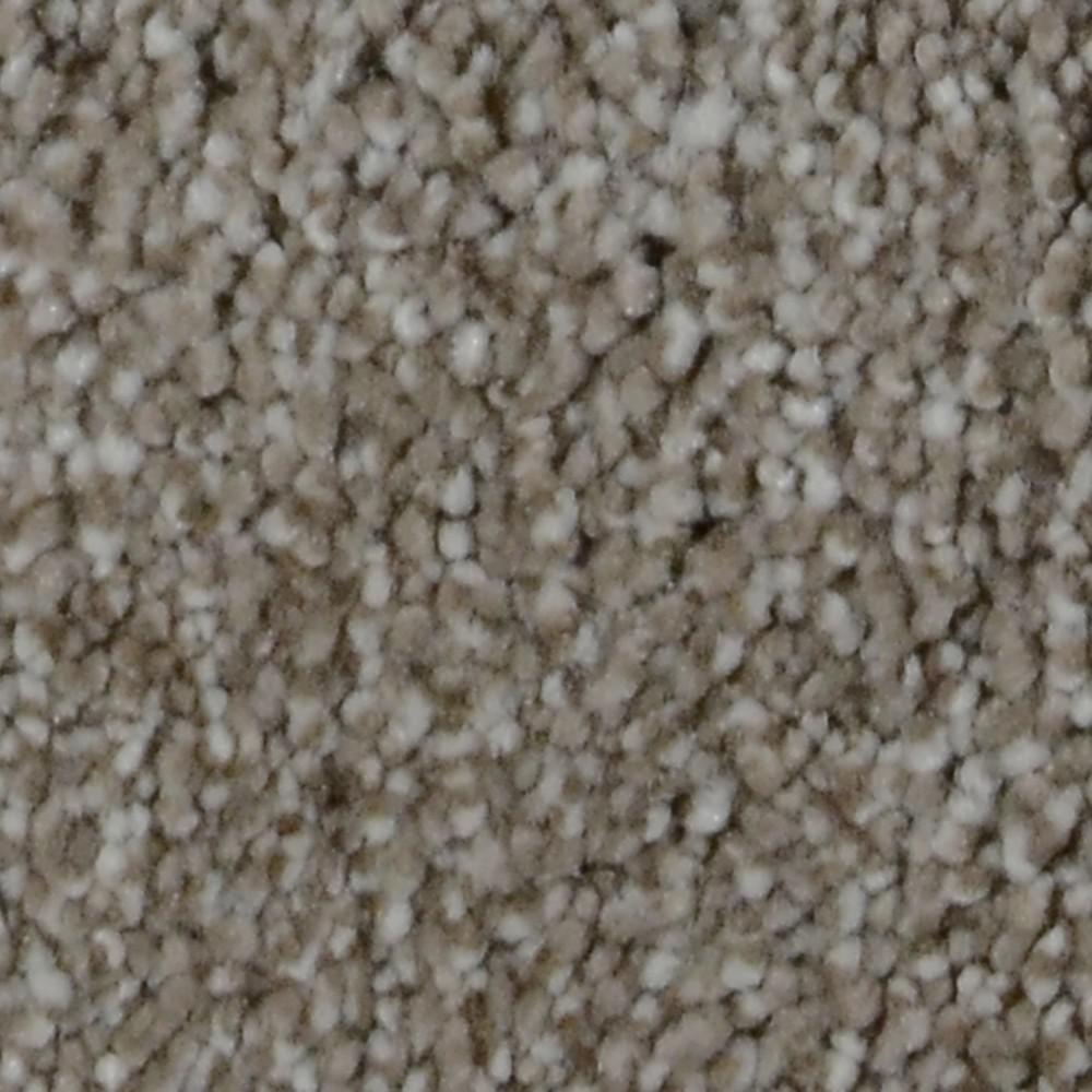 Carpet Sample - Gemstone II - Color Radiant Texture 8 in. x 8 in.