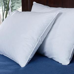Pure Down Puredown Down and Feather Bed Jumbo Pillow in Standard/Queen (Set of 2) by Pure Down