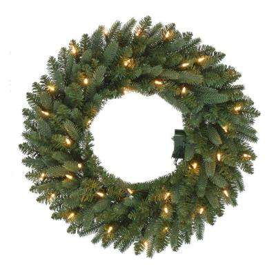 24 in. Pre-Lit B/O LED New Meadow Artificial Christmas Wreath x 225 Tips with 35 Warm White Lights and Timer