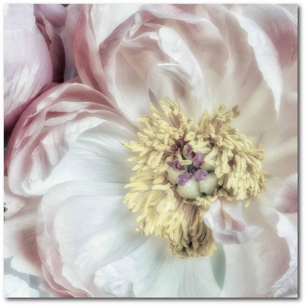Courtside Market Dusty Bloom III Gallery-Wrapped Canvas Nature Wall Art 24 in. x 24 in., Multi Color was $115.0 now $64.03 (44.0% off)