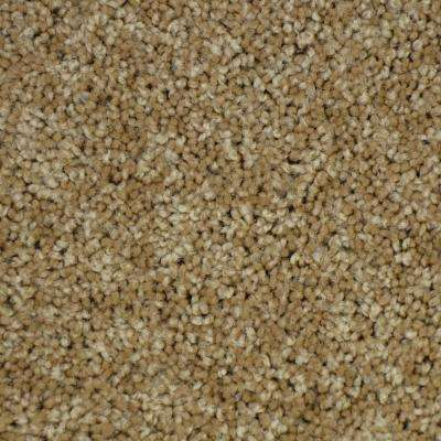 Carpet Sample-Thoroughbred ll -Color Chestnut Texture 8 in. x 8 in.