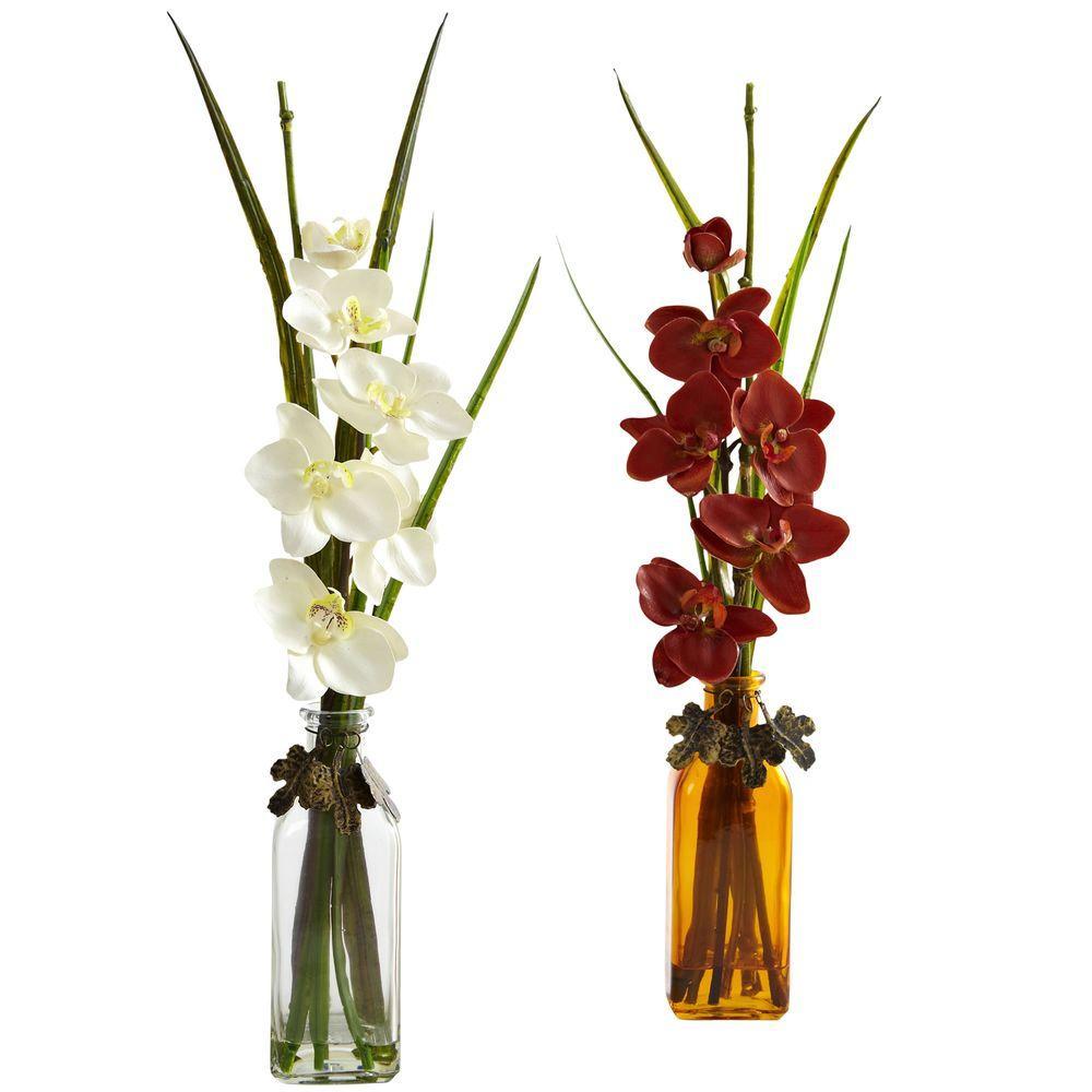 Phalaenopsis with Colored Jar (Set of 2)