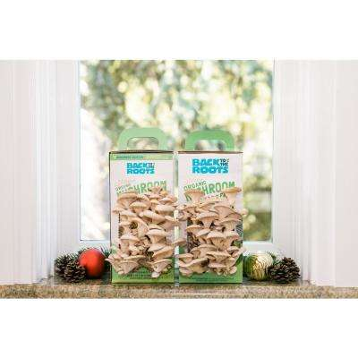 Organic Mushroom Grow Kit -Discovery Edition (2-Pack)