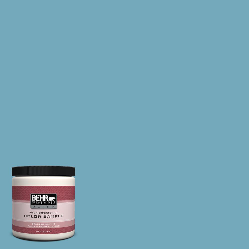 BEHR Premium Plus Ultra 8 oz. #S460-4 Snowboard Interior/Exterior Paint Sample