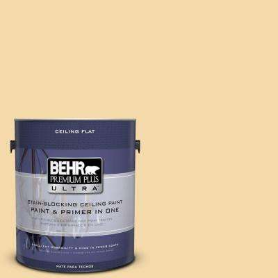1-Gal. No.UL180-19 Ceiling Tinted to Caribbean Sunrise Interior Paint