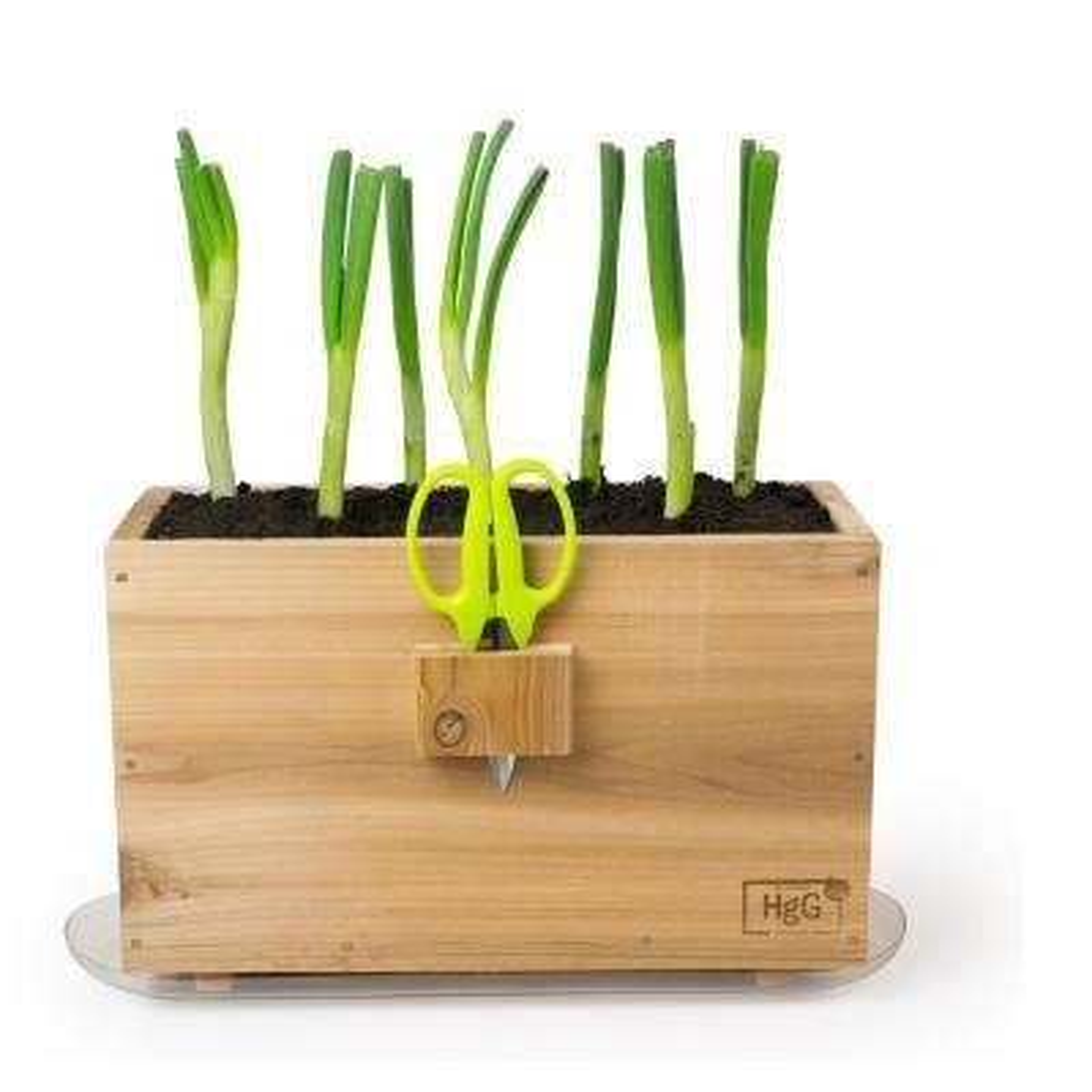 Architec Homegrown Gourmet Harvest Window Box