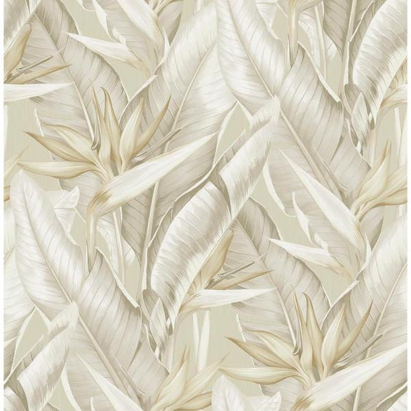 Arcadia Beige Banana Leaf Paper Strippable Roll Wallpaper (Covers 56.4 sq. ft.)
