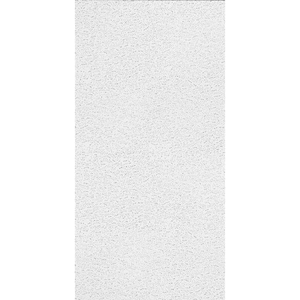 Armstrong 2 ft x 4 ft textured ceiling panels 10 piececarton armstrong 2 ft x 4 ft textured ceiling panels 10 piece dailygadgetfo Image collections